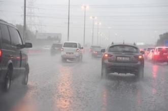 أربعاء غير مستقر.. أمطار على 11 منطقة مع غبار وضباب - المواطن