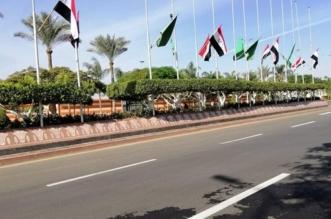 صور.. استعدادات في مطار القاهرة ترقبًا لزيارة ضيف مصر الكبير - المواطن