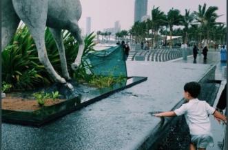 جدة تحت المطر فانهمرت المشاعر: يا موطن العشق القديم يا سيدة كل المدن - المواطن