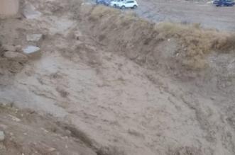 السفارة لدى الأردن تتفاعل مع مبادرة دعم ضحايا السيول - المواطن