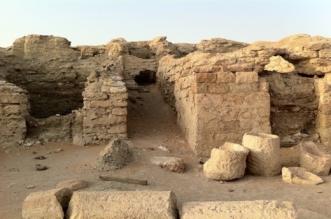 قرية الفاو أحد المعالم التراثية في وادي الدواسر - المواطن