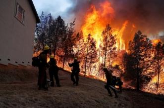 صور.. أكثر من 1000 مفقود و 71 قتيلاً في حريق كاليفورنيا - المواطن