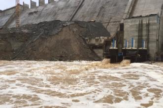 محطة تنقية مياه سد وادي عردة
