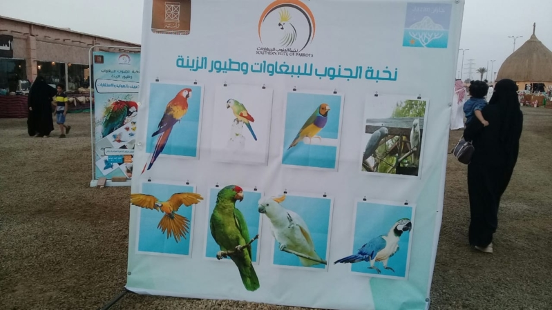 فيديو وصور.. مهرجان الببغاوات والطيور يجذب زوار القرية التراثية بجازان