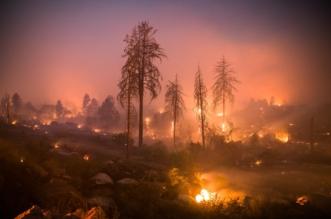 صور.. مقتل 42 وتدمير 7 آلاف منزل بحرائق كاليفورنيا - المواطن