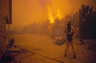 البحث عن ألف مفقود في أسوأ كارثة حريق في غابات كاليفورنيا - المواطن