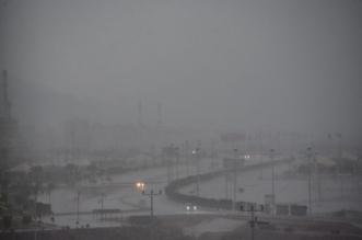 الأرصاد: أمطار رعدية مصحوبة برياح نشطة على هذه المناطق - المواطن