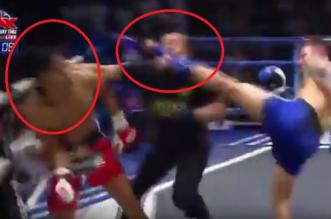 فيديو مثير.. ملاكم يسقط خصمه وحكم اللقاء بضربة واحدة - المواطن
