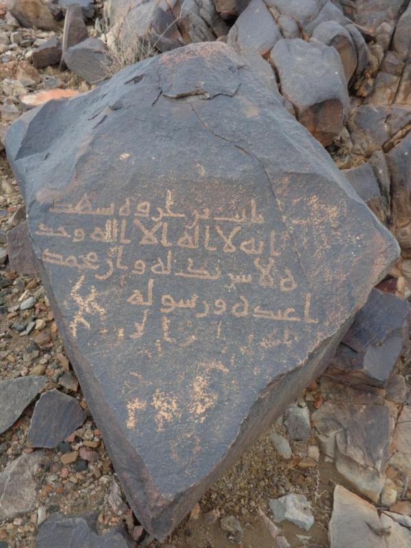 صور.. ٢١٤ موقعاً يدخل سجل الآثار الوطني في بيشة - المواطن