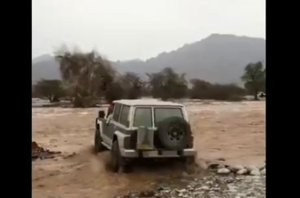 فيديو.. مهايط يغامر بحياته.. قطع السيل بمركبته وصديقه يصوره - المواطن