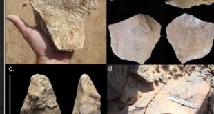 دراسة سعودية: الآشوليون استوطنوا الدوادمي قبل ٢٠٠ ألف عام
