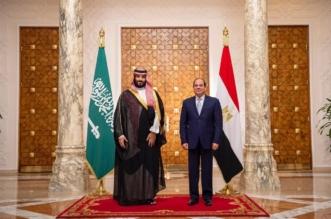 فيديو من قصر الاتحادية .. رسالة تضامن سعودية مصرية - المواطن