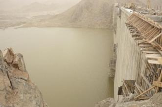 البيئة تنفي انهيار سد وادي الليث - المواطن