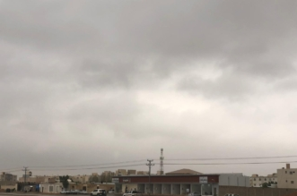أمطار رعدية ورياح نشطة على هذه المناطق - المواطن