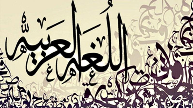 العربية لغة الحضارة ولسان القرآن الكريم صحيفة المواطن الإلكترونية