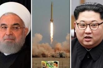 بالأسماء والتفاصيل.. الكشف عن أكبر صفقة بين #إيران #وكوريا_الشمالية - المواطن