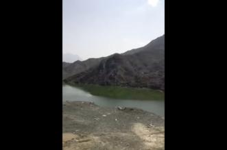 """""""المواطن"""" ترصد خطرًا كبيرًا يهدد أهالي وزوار القنفذة في سد وادي قنونا - المواطن"""