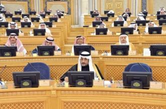 الشورى يطالب بسرعة إصدار نظام هيئة الرقابة والتحقيق - المواطن