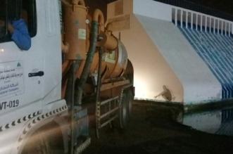 مستنقع مجسم سد جازان1