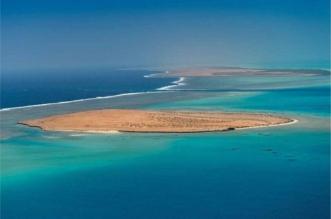 #مشروع_البحر_الأحمر .. وجهة عالمية في قطاع السياحة الفاخرة - المواطن