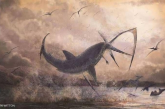 قبل 85 مليون سنة.. القرش الخارق يمزق رقبة الديناصور الطائر! - المواطن