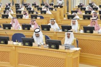 الشورى يطالب الخطوط السعودية بخفض تكاليف الرحلات الداخلية والدولية - المواطن