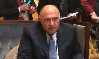 الخارجية المصرية ترحب بنتائج مشاورات السويد بين الأطراف اليمنية - المواطن