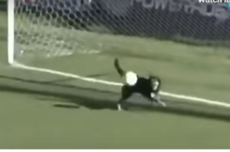 فيديو.. كلب يتصدى لهدف محقق برأسه - المواطن