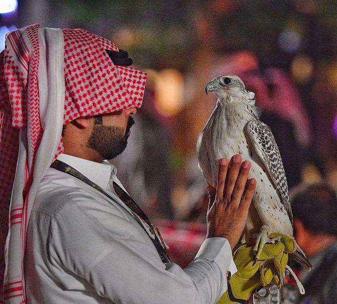معرض الصقور والصيد السعودي .. واحات تحاكي الطبيعة من الطائف إلى الربع الخالي - المواطن