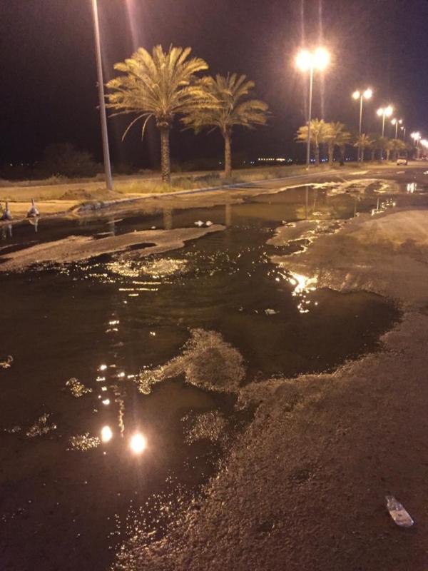 صور.. كارثة بيئية في #إسكان_الحصمة بسبب المجاري و #المياه تتجاهل! - المواطن