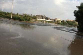الحصيني يكشف خريطة الأمطار المتوقعة غدًا - المواطن
