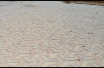 فيديو.. الجراد يهاجم منتزه الردف في الطائف ويفترش أرضيته وحوائطه - المواطن