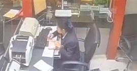فيديو.. رد فعل موظفة لحظة سقوط قطة عليها أثناء العمل