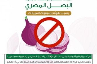 البيئة تحظر استيراد البصل المصري - المواطن