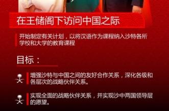 واس تنقل بدء خطة إدراج الصينية كمقرر دراسي في المملكة باللغة نفسها - المواطن