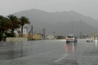 أمطار رعدية على جازان حتى الثامنة مساءً - المواطن