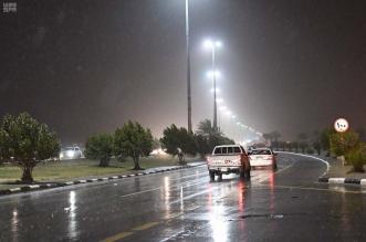 أمطار وغبار مع ضباب غدًا - المواطن