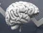 هل ضعف الذاكرة دليل على الذكاء؟
