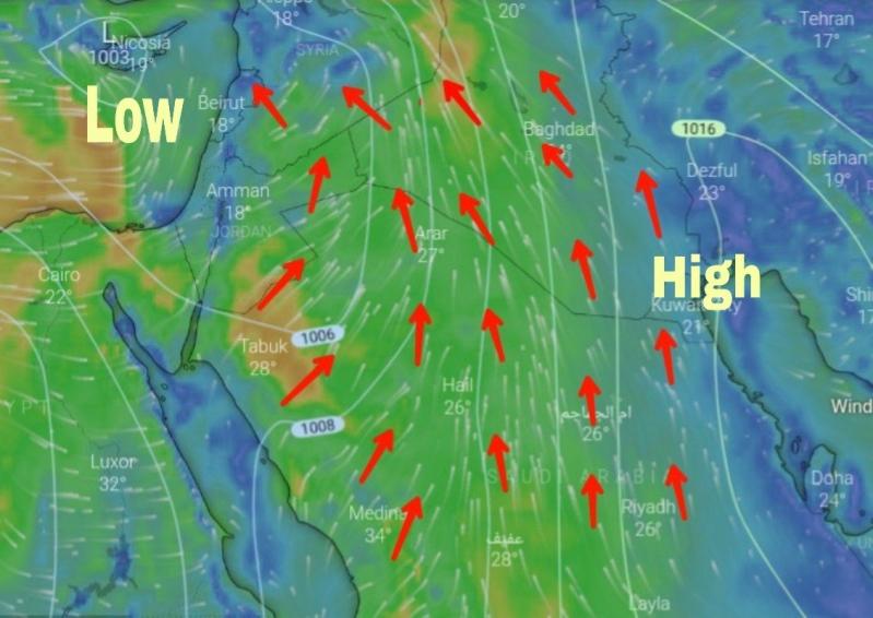 الزائر القطبي يصل غدًا.. وتحذيرات مستمرة من العواصف الترابية والأمطار