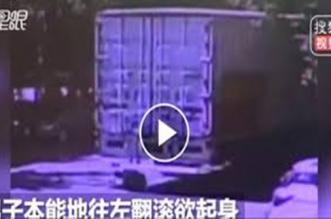فيديو.. مصرع شاب انشغل بهاتفه تحت عجلات شاحنة - المواطن