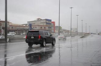 الأرصاد: أمطار رعدية على الباحة حتى الخامسة - المواطن
