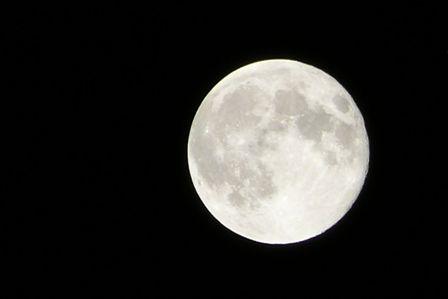 فلكية جدة: بدر ربيع الآخر يزين سماء السعودية.. الليلة