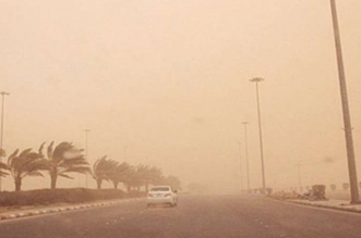 مستشفيات ومراكز عسير الصحية تستعد للتقلبات الجوية والغبار - المواطن