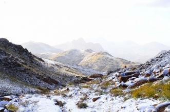 توقعات بأمطار اليوم وثلوج على مرتفعات تبوك - المواطن