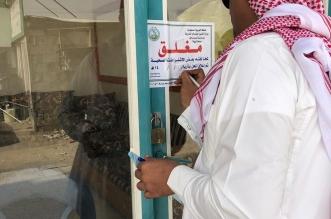 جولة تفتيشية في بارق توقع مخالفات بلدية صادمة - المواطن