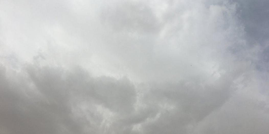 أمطار رعدية وغبار على 4 مناطق.. غداً