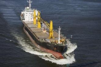 سفينة إيرانية تسببت بمقتل 100 صياد يمني وتعطل نشاط 30 ألفاً - المواطن