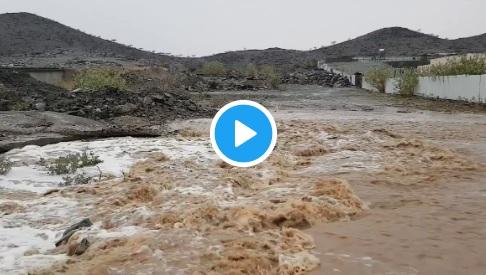 فيديو.. جريان الشعاب في السيل الكبير شمال الطائف