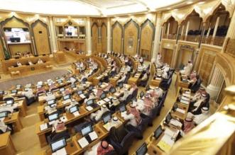 إنجازات لجان مجلس الشورى خلال عام - المواطن