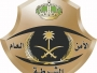 ضبط 3 أشخاص تباهوا بحيازتهم للأسلحة النارية في الرياض